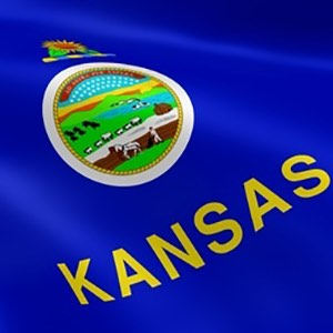 The Kansas State Flag - closeup